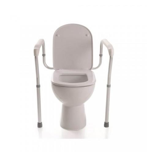 Cadru WC cu doua picioare -...